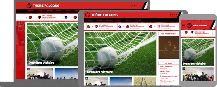 Thème Falcons - responsive design - compatible mobile/tablette