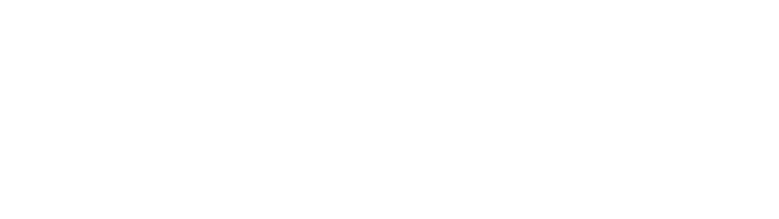 Logo principal blanc
