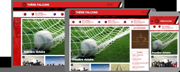Thème Falcons - responsive design - compatible mobile/tablette
