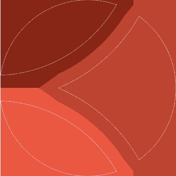 Logo Kalisport couleur
